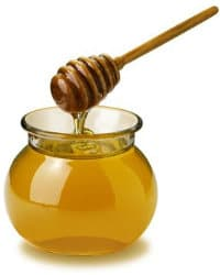 how to stop spam email: the honey pot